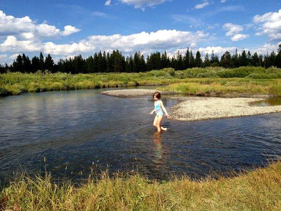 Under Canvas Yellowstone : Stream
