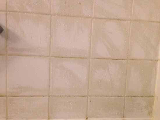 Hyatt Regency Paris Charles de Gaulle: Close up of shower tiles dirty and not well cleaned/painted.