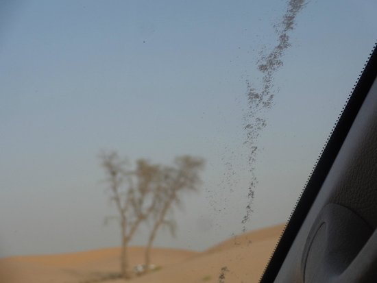 Emirates Tours and Safaris: Sand Bashing