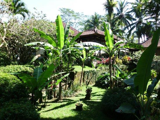 Villa Orchid Bali: Gartenanlage