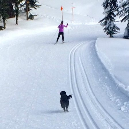 SilverStar Mountain Resort: Nordic Trails are fabulous!