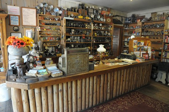 Wilson's Cottages: owner Adrian's extensive camera collection in the front office