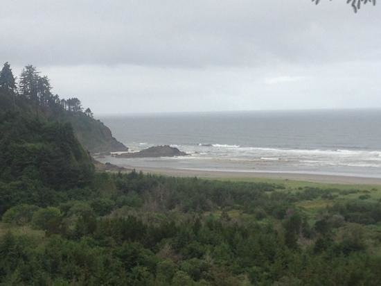 Cape Disappointment State Park: just outside the park