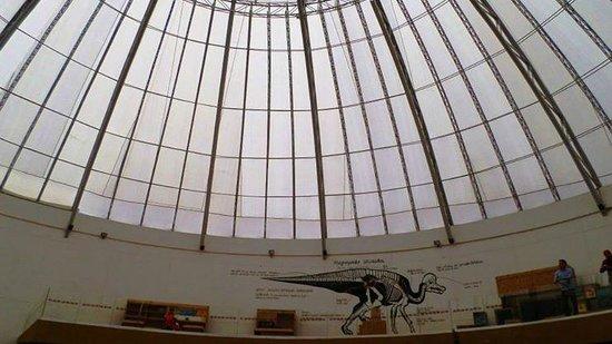 La Rodadora: El domo del área de la era de los dinosaurios