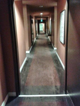 Adina Apartment Hotel Berlin Checkpoint Charlie: 3rd FLOOR HALLWAY