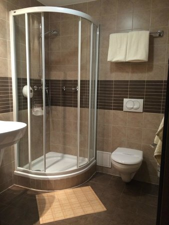 Hotel Wyspianski : Good sized bathroom