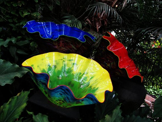 Phipps Conservatory and Botanical Gardens : dale chihuly glass