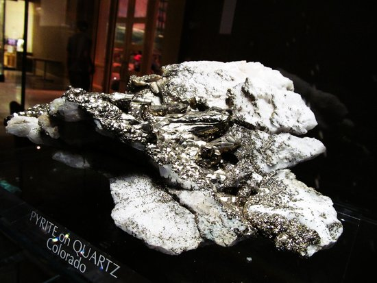 Carnegie Museum of Natural History : Pyrite
