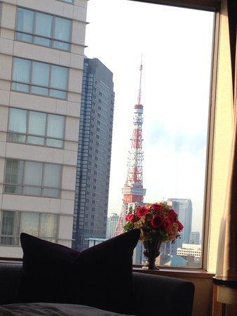 Ana Intercontinental Tokyo: View from