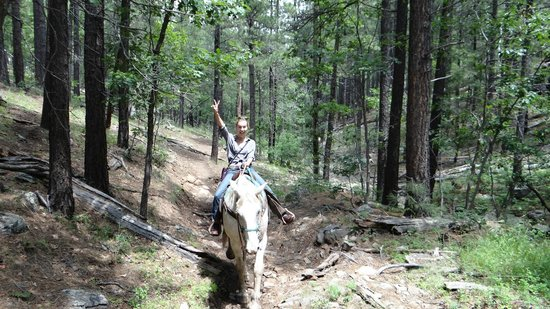 High Mountain Trail Rides: My daughter