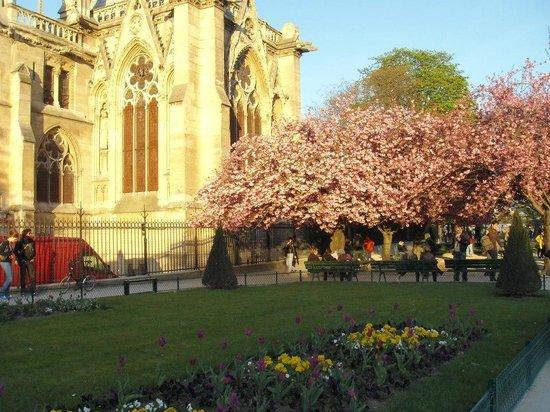 Tours de la Cathedrale Notre-Dame : lateral do jardim