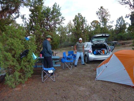 Mesa Verde RV Resort: Camp spot 42