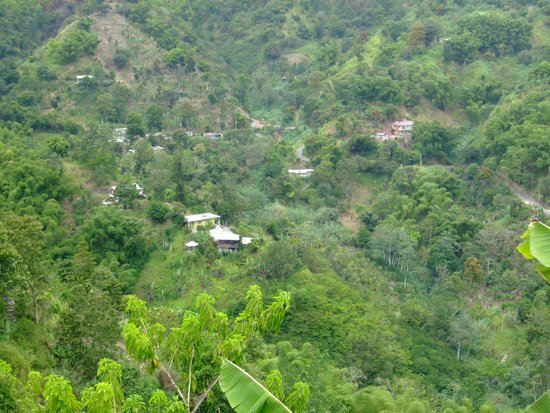 Royal Decameron Club Caribbean: view in blue mountains