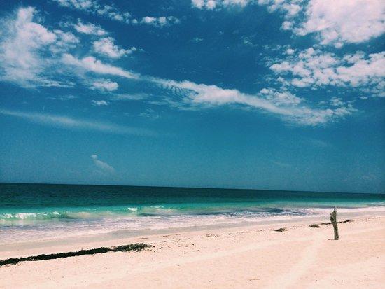 Casa de las Olas: Vista da praia na frente do hotel