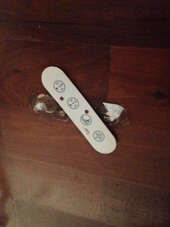 Radisson Blu es. Hotel, Roma: control for spa bath which didn't work anyway!