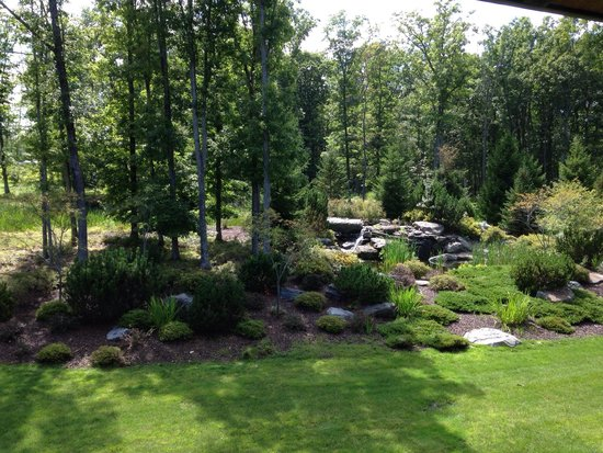 The Lodge at Woodloch : Waterfall View from 312