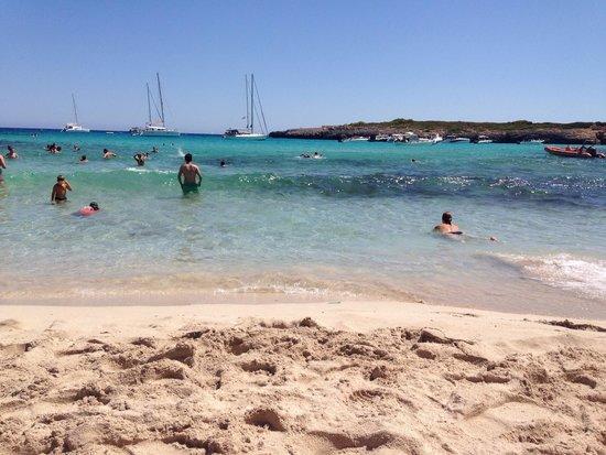 Calas de Majorca, Spain: Magnifique