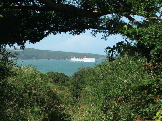 Glan House: Fishguard harbour from the coast path
