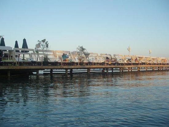Elysees : Dock
