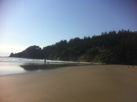Oswald West State Park Aug 2014