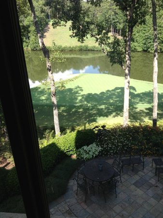 Pursell Farms : View from Lodge 17 Green