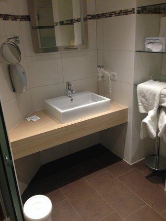 Seehotel Schwan: baño