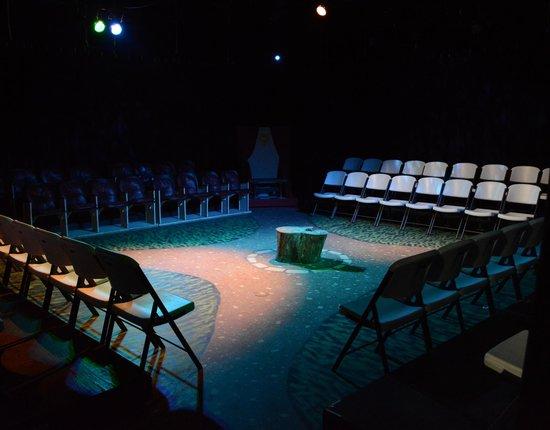 EmilyAnn Theatre & Gardens : The indoor Burdine Johnson Studio Theatre