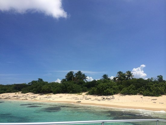 Castillo Tours: Icacos view from the catamaran