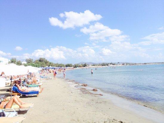 Saint George Hotel: Stranden