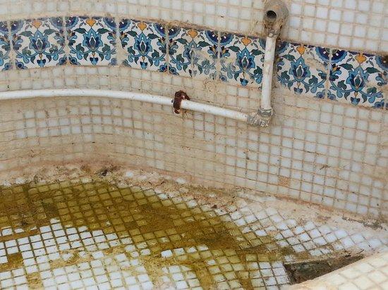 Winzrik Resort & Thalasso Djerba : Toujours la piscine