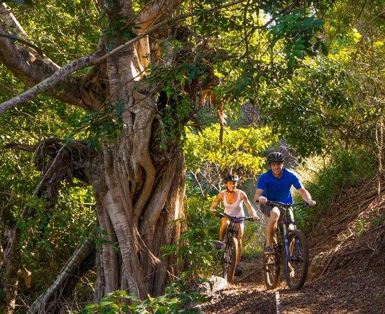 Makawao, Hawái: Biking island style!