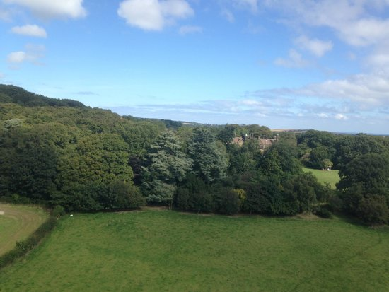 Wrea Head Hall: House over trees from Air
