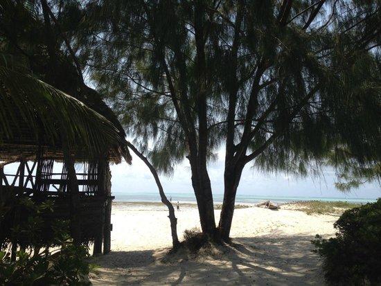 Hakuna Majiwe Beach Lodge: il panorama dal dondolo