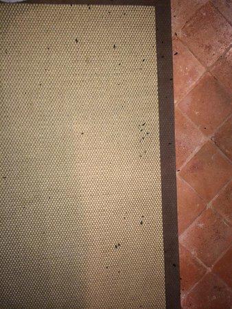 la ghiaia tenuta fourmis ecras