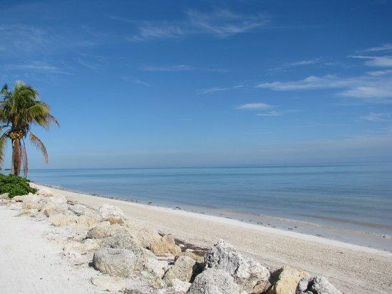 Coco Plum Beach At Condo