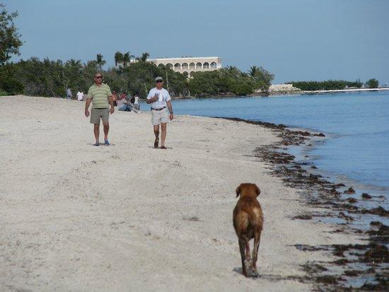 Coco Plum Beach Hiking