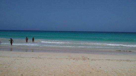 Weiler Caribbean Sea : Macao, en la excursion de los booguis