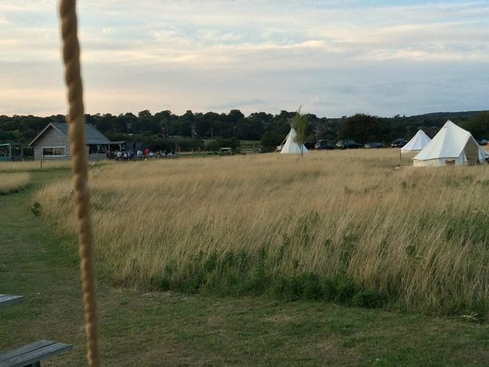 Billycan Camping: view of common area from tent