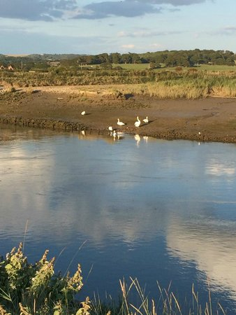 Billycan Camping: River Arun
