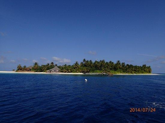 Angaga Island Resort : ボートからのアンガガ
