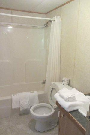 Fontana Village Resort: Bathroom