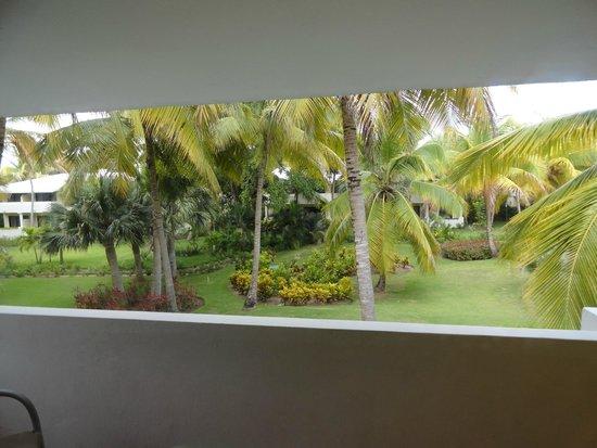 Meliá Caribe Tropical: Вид из номера