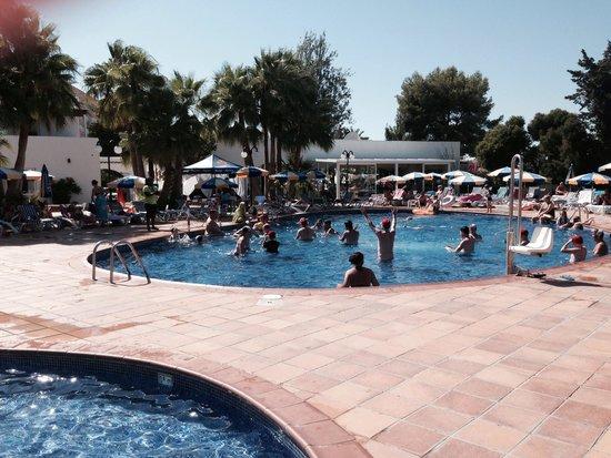 Sirenis Hotel Club Siesta: Pool
