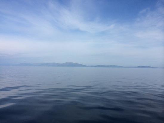 Dingle Bay Speed Boat Tours & Great Blasket Island Experience: Exceptionally calm in Dingle Bay