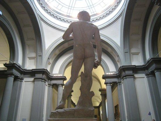 Galleria dell'Accademia : David - rear