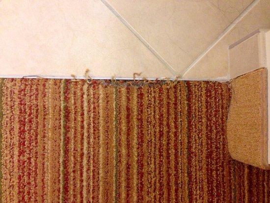 Residence Inn Moline Quad Cities: Carpet wear between bathroom and bedroom area.