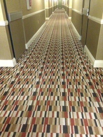 Hilton Wilmington Riverside: hallway