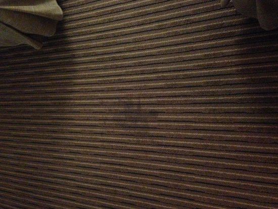 Hilton Wilmington Riverside: carpet in room