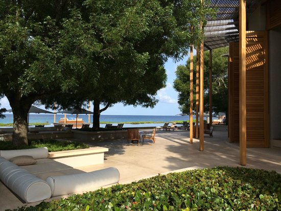 Amanyara: Lush trees and sea view