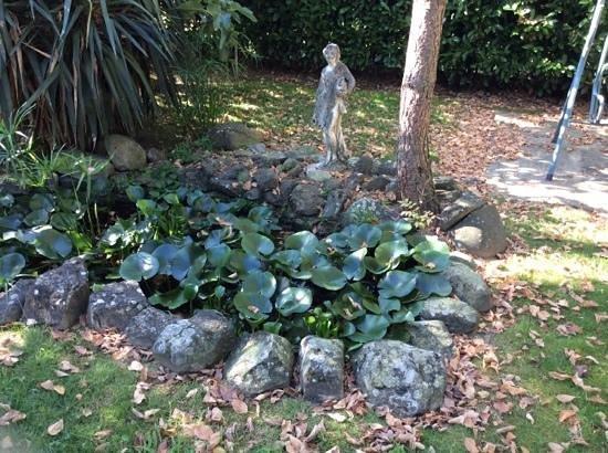 Stagno in giardino foto di pianeta benessere pistoia for Stagno giardino